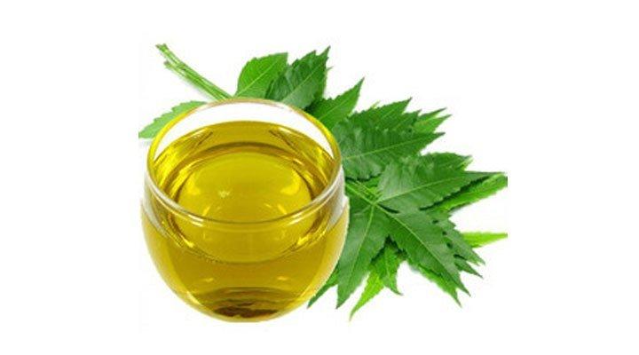 Neem oil for haircare