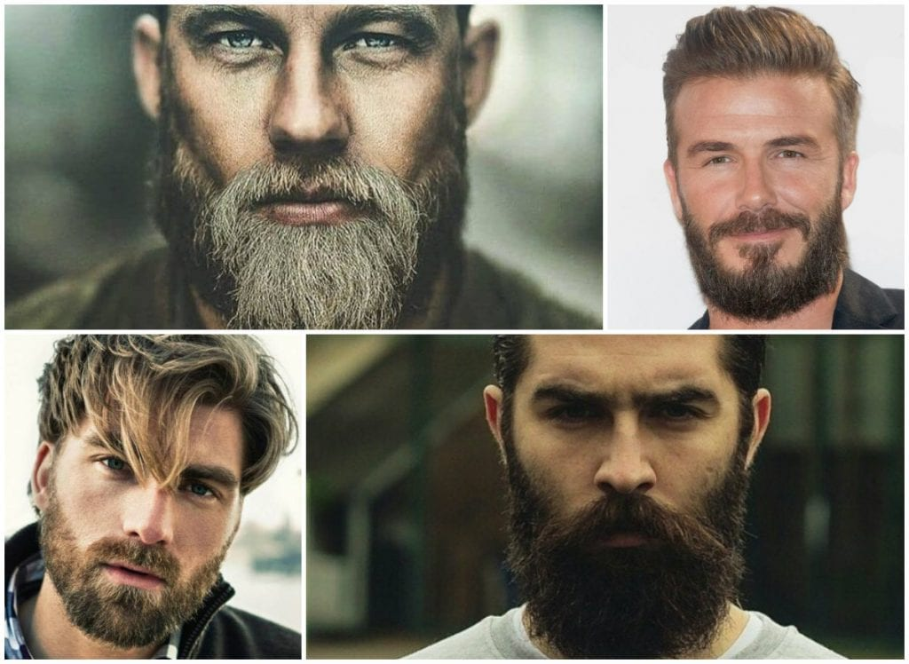 Top 20 Beard Styles for Men in 2019 - The Frisky