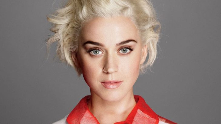 Katy Perry Net Worth 2018/2019, Personal Life, Career - The