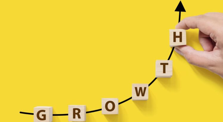 How to Build a Sales Growth Strategy That Delivers Results?